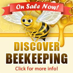 Top Bar Hives